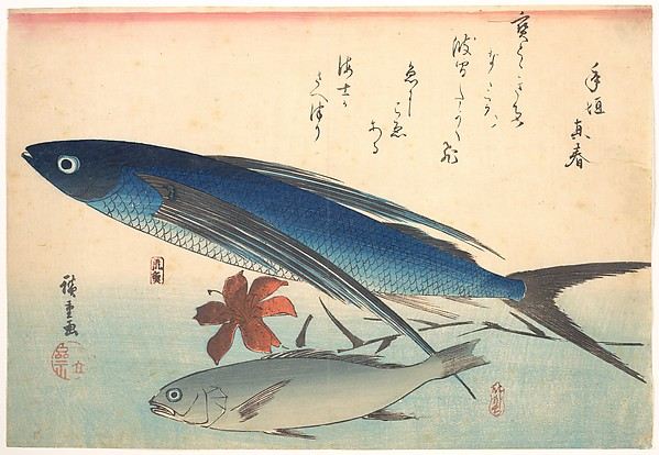Tobiuo and Ishimochi Fish, from the series Uozukushi (Every Variety of Fish)