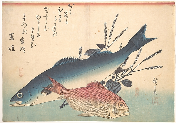 Suzuki and Kinmedai Fish from the series Uozukushi (Every Variety of Fish)