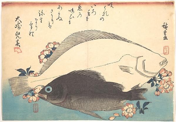 魚づくし ひらめ めばるに桜<br/>Hirame and Mebaru Fish with Cherry Blossoms, from the series Uozukushi (Every Variety of Fish)