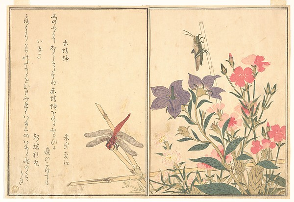 Red Dragonfly (Akatonbo); Locust (Inago), from the Picture Book of Crawling Creatures (Ehon mushi erami)