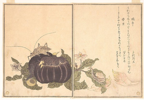 『画本虫撰』「蝸牛」「轡虫」<br/>Land Snail (Katatsumuri); Giant Katydid (Kutsuwamushi), from the Picture Book of Crawling Creatures (Ehon mushi erami)