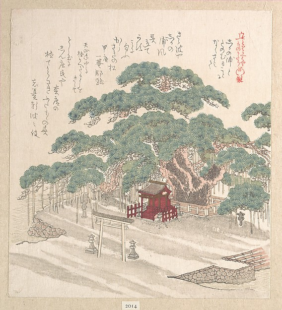 Shrine Under a Big Pine Tree