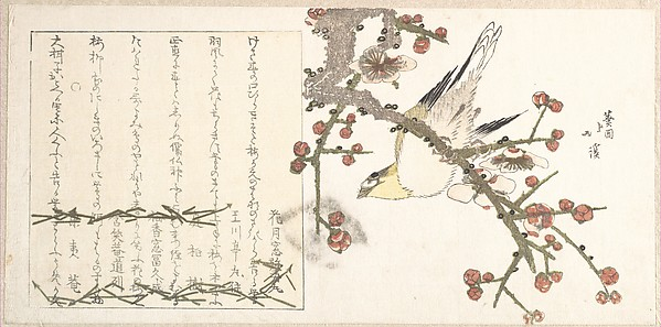 Bush Warbler on a Plum Branch (Ume ni uguisu)
