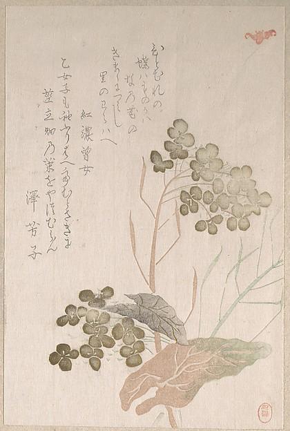 Natane Flower