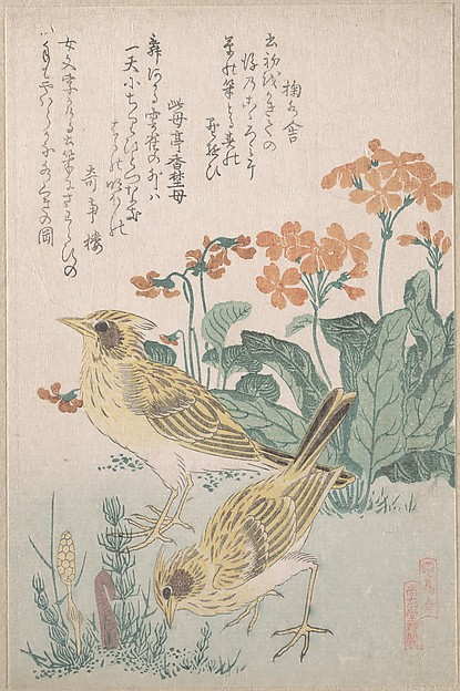 Skylarks and Primroses, from the Series An Array of Birds (Tori awase), from Spring Rain Surimono Album (Harusame surimono-j, vol. 3)