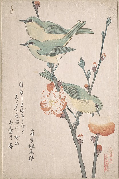 "『鳥合』 桃花に目白<br/>Japanese White-eyes on a Branch of Peach Tree,"" from the Series An Array of Birds (Tori awase), from Spring Rain Surimono Album (Harusame surimono-jō, vol. 3)"