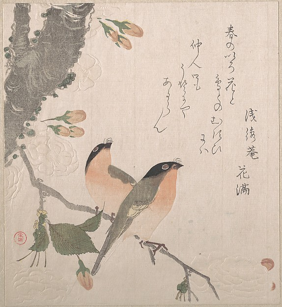 Bullfinches and Cherry Blossoms