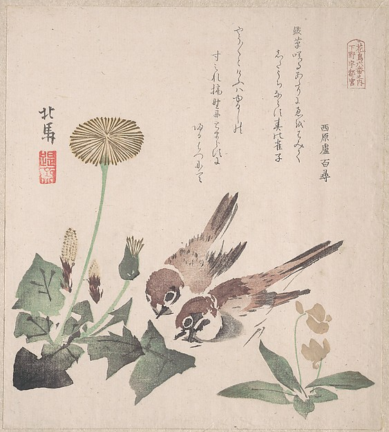 摺物帖 『春雨集』 『花鳥六番之内 下野宇都宮』 タンポポに雀  <br/>Spring Rain Collection (Harusame shū), vol. 3: Sparrows and Dandelions