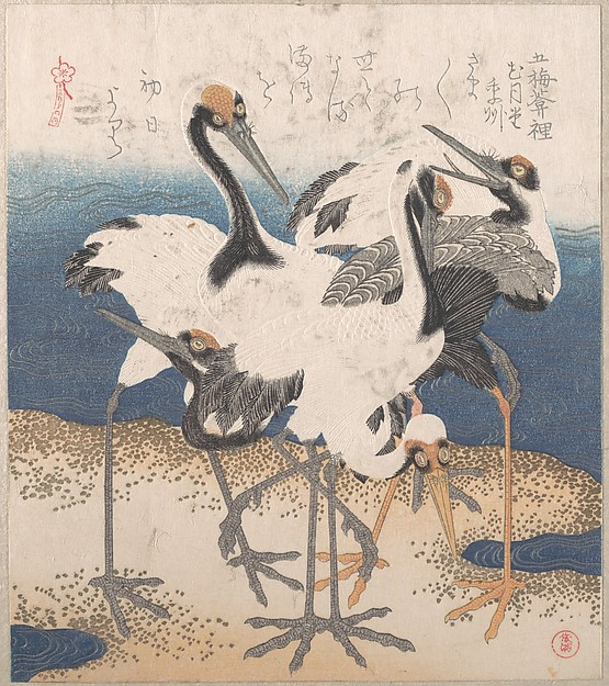 Five Storks by the Seashore