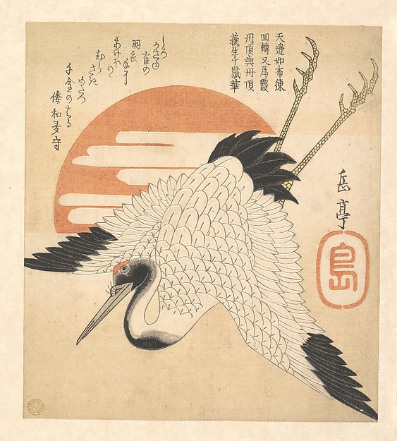 White Crane Flying across the Sun's Disc