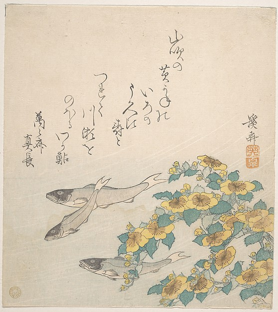 Fishes Swimming with Yellow Flowers