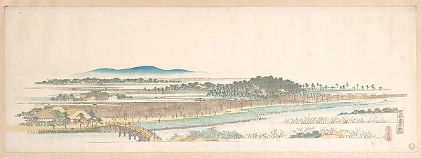 吾妻の森<br/>View of Azuma Wood