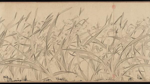 南宋  趙孟堅  水仙圖  卷<br/>Narcissus