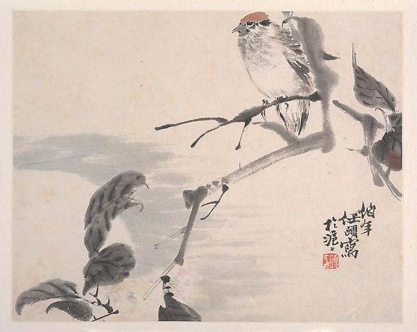Animals, Flowers and Birds