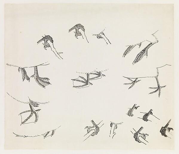 Birds' Feet