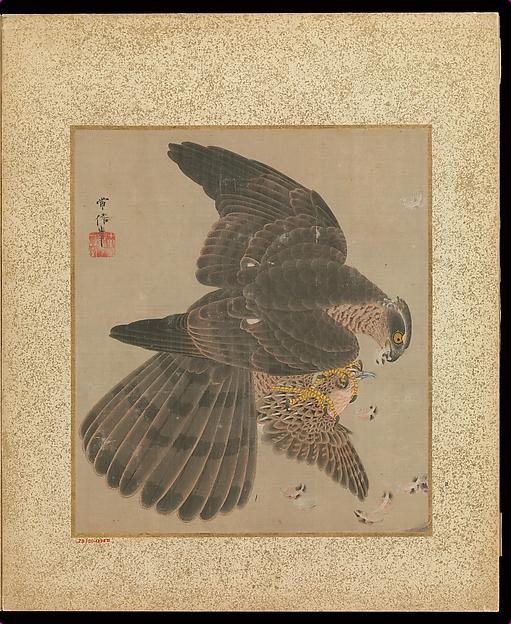 Album of Hawks and Calligraphy