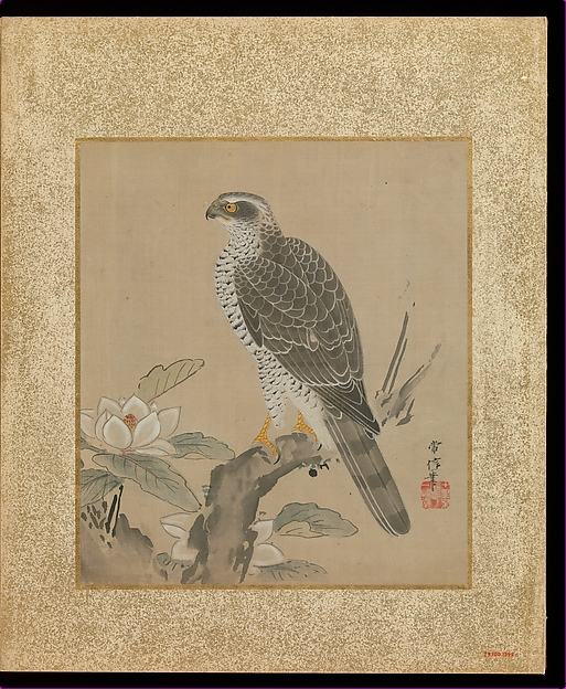 十鷹書画冊<br/>Album of Hawks and Calligraphy