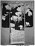 Woman's Formal Overrobe (Uchikake) with Maple Tree and River