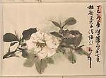 繪畫贈謝稚柳<br/>Flora and Landscape (Paintings for Xie Zhiliu)
