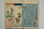 Picture Book for the Practice of Drawing (Ehon tebikigusa)