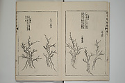 The Mustard Seed Garden Painting Manual (Jieziyuan huazhuan; Kaishien gaden) (Japanese reprint)