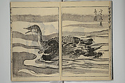 Kanyōsai Picture Album (Kanyōsai gafu)