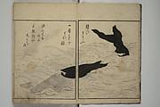 The Servants of the Dragon King of the Sea: Fish and Shells (Tatsu no miyatsuko gyokai fu)