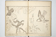 True Depictions of Bird and Flower Pictures (Kachōe shashin zue)