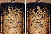 Case (Inrō) with Design of Wild Carrot and Autumn Grasses