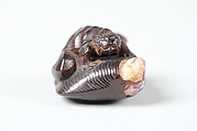Netsuke of Frog-like Tortoise on a Shell