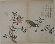 Bird on a Flowering Branch