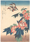 紅蜀葵に燕と川蝉図