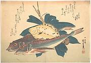 Kanagashira and Karei Fish, from the series Uozukushi (Every Variety of Fish)
