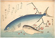 Fugu and Inada Fish, from the series Uozukushi (Every Variety of Fish)