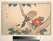 Camellias with a Bird