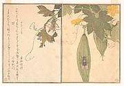 Grasshopper (Kirigirisu); Cicada (Semi), from the Picture Book of Crawling Creatures (Ehon mushi erami)