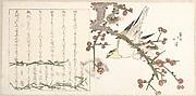 Bush Warbler on a Plum Branch (Ume ni uguisu)