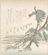 Sea-Side Landscape with Pine Trees and Flying Cranes