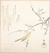 New Moon; Nightingale on a Plum Branch