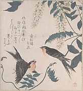 Swallows and Wisteria