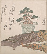 Potted Pine Tree and Koto (Japanese Harp)