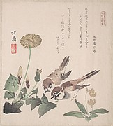 Spring Rain Collection (Harusame shū), vol. 3: Sparrows and Dandelions