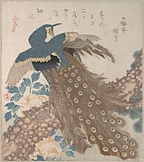Peacock on Pine Tree and Peonies, from the series Three Sheets (Mihira no uchi)