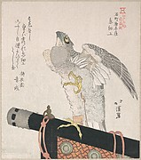 Hawk Made of Silk; Specialities of Karakiya in Kokucho