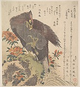 Eagle on a Rock; Flowering Azaleas