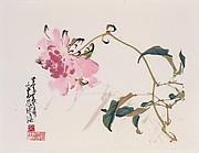 近代  蜂戲牡丹圖      冊頁<br/>Flower and Bee
