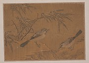 Two Birds and Bamboo Plant