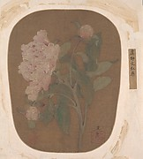 Peony Flower and Leaves