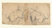 Elephants in Combat