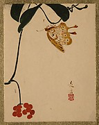 Red Berry Plant and Butterfly